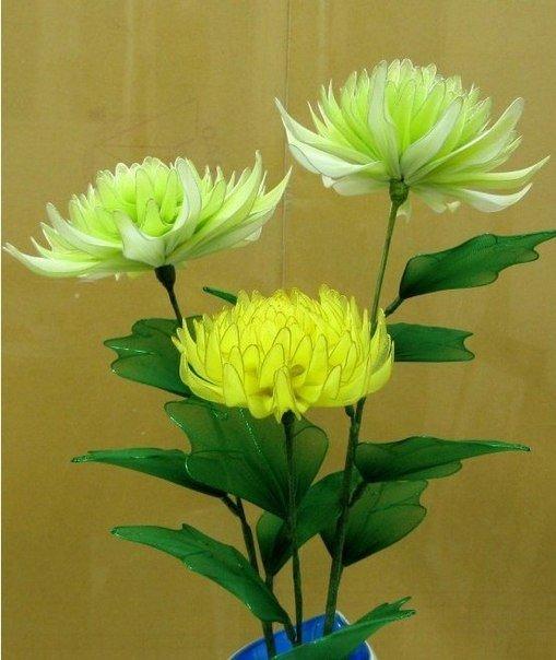 Хризантемы из капроновых чулок